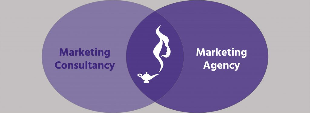 marketing-consultancy-versus-marketing-agency-venn-diagram-genie-insights
